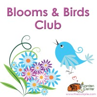 Blooms and Birds Club