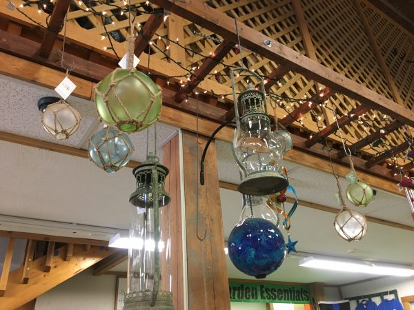 Home Accents Lantern Globes